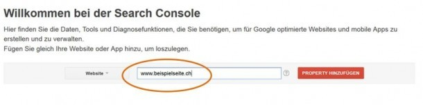 URL in der Search Console eingeben